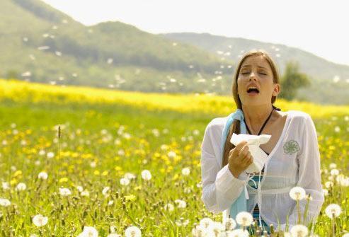 10 Common Allergy Triggers